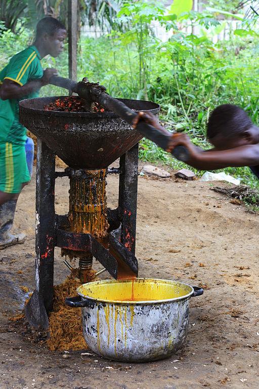 Extraction_de_l'huile_de_palme_dans_le_village_de_Tayap
