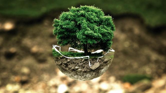 environmental-protection-683437_960_720