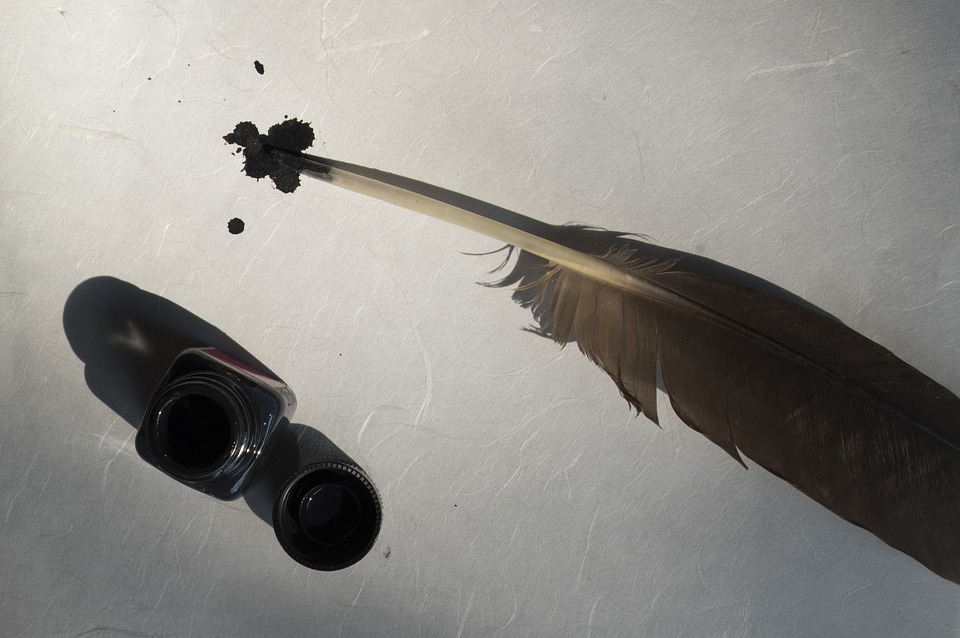 bird-feather-2505308_960_720