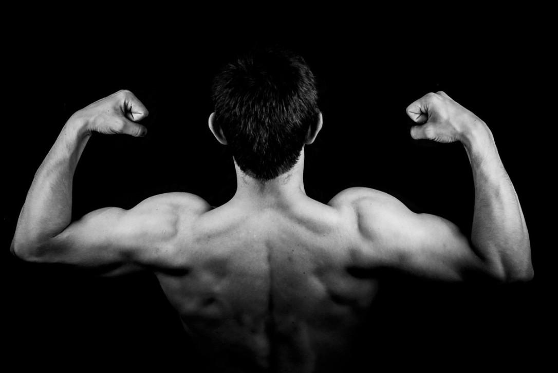 biceps_black_and_white_bodybuilder_bodybuilding_male_man_muscles_torso-990548