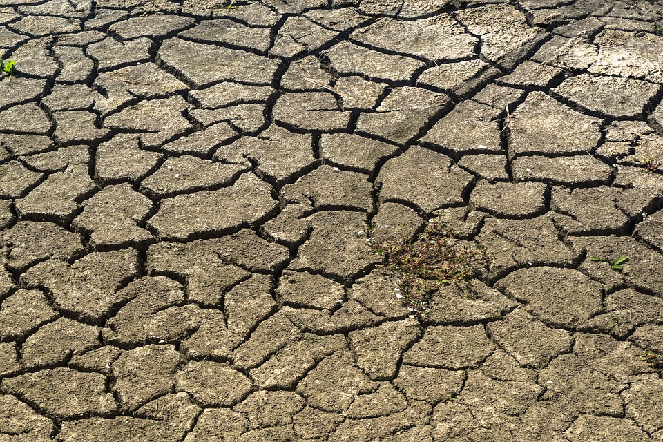 drought-1745154_960_720